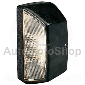Licence Plate Light, P21W for MAN | Original Equipment HELLA: 2KA 003 389-087